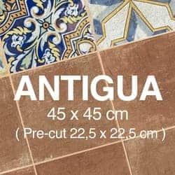 Antigua Miniatura