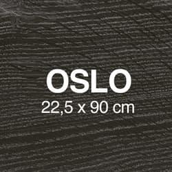 Oslo Miniatura