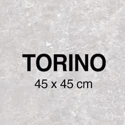 Torino Pav Miniatura