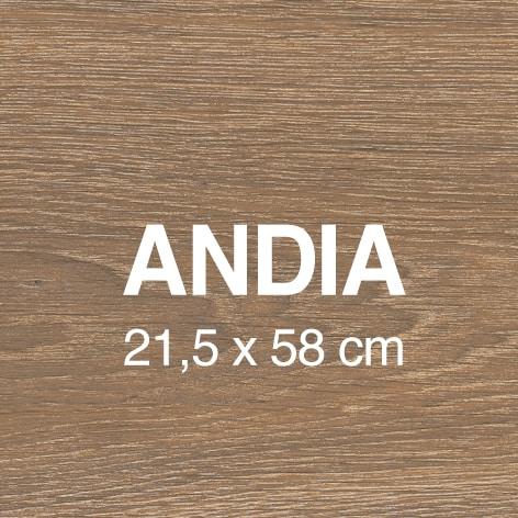 Andia Mini 1