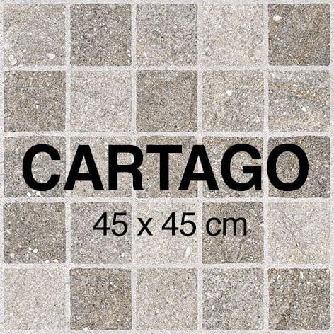 Mini Cartago1